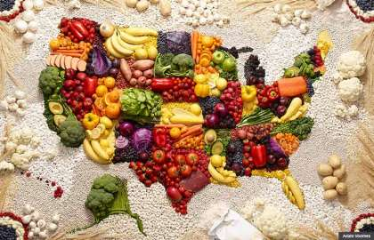 740-usa-map-diet-foods.imgcache.rev1359853570217.web.420.270