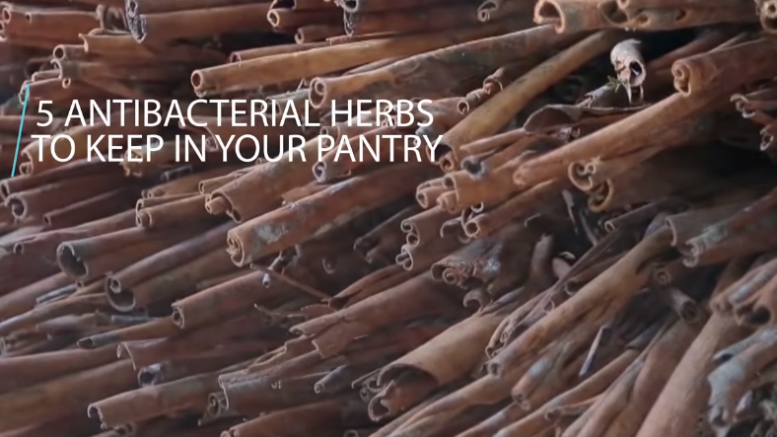 5 Antibacterial Herbs To Keep In Your Pantry (Video)